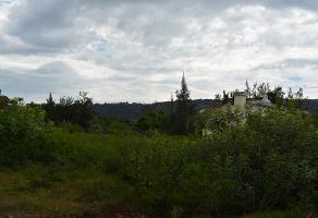 Foto de terreno habitacional en venta en  , las golondrinas, colotlán, jalisco, 14101472 No. 01