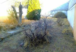 Foto de terreno comercial en venta en  , las granjas, chihuahua, chihuahua, 0 No. 01