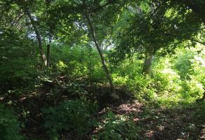 Foto de terreno habitacional en venta en las higueras , chivato, villa de álvarez, colima, 0 No. 01