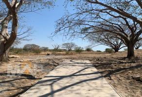 Foto de terreno habitacional en venta en  , las lagunas, villa de álvarez, colima, 0 No. 01