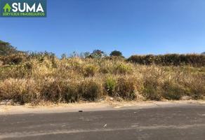 Foto de terreno habitacional en venta en  , las lagunas, villa de álvarez, colima, 6604425 No. 01