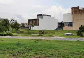 Foto de terreno habitacional en venta en las lomas , jardines de la patria, zapopan, jalisco, 0 No. 01