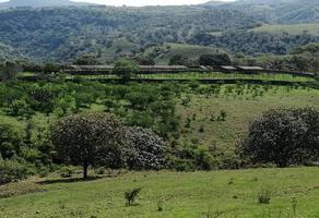 Foto de rancho en venta en las mesitas, santa lucia , santa lucia, zapopan, jalisco, 0 No. 01