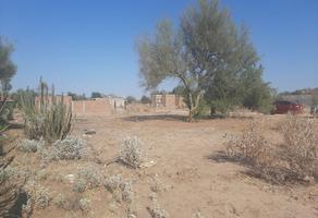 Foto de terreno habitacional en venta en . , las minitas, hermosillo, sonora, 0 No. 01