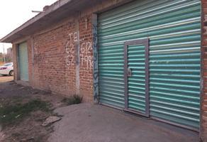Foto de casa en venta en  , las misiones, irapuato, guanajuato, 14612761 No. 01