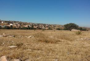 Foto de terreno habitacional en venta en las norias s/n , encarnación de diaz, encarnación de díaz, jalisco, 4324738 No. 01