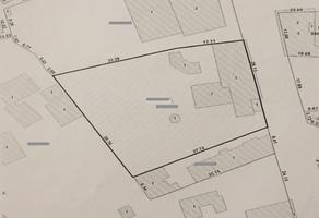 Foto de terreno habitacional en venta en las palmas, cuernavaca , las palmas, cuernavaca, morelos, 0 No. 01