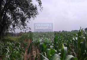 Foto de terreno habitacional en venta en las palmas o encino , la palma tenango, tenango del aire, méxico, 10729132 No. 01
