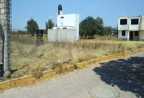 Foto de terreno habitacional en venta en las palmas sn , san francisco tlacuilohcan, yauhquemehcan, tlaxcala, 19636393 No. 01