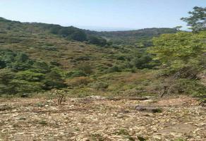 Foto de terreno habitacional en venta en las peras , indaparapeo, indaparapeo, michoacán de ocampo, 0 No. 01