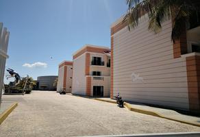 Foto de departamento en renta en  , las pilas, carmen, campeche, 14398334 No. 01