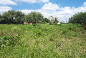 Foto de terreno habitacional en venta en  , las pintas de abajo, san pedro tlaquepaque, jalisco, 6159928 No. 01