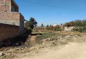 Foto de terreno habitacional en venta en  , las pintas, el salto, jalisco, 6539778 No. 01
