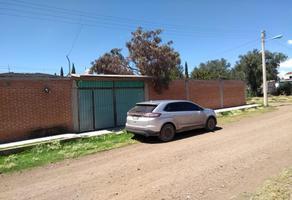 Foto de terreno habitacional en venta en  , las pintas, temascalapa, méxico, 14647896 No. 01