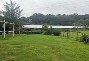 Foto de terreno habitacional en renta en las rosas , san miguel topilejo, tlalpan, df / cdmx, 17608744 No. 01