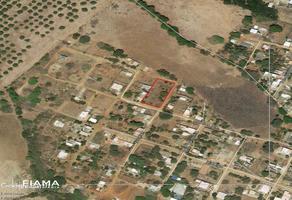 Foto de terreno habitacional en venta en  , las varas centro, compostela, nayarit, 17939733 No. 01