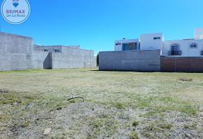 Foto de terreno habitacional en venta en laurel cerezo , praderas del sur, durango, durango, 0 No. 01