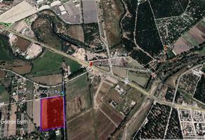 Foto de terreno comercial en venta en laurel , rancho la nogalera, durango, durango, 19351603 No. 01