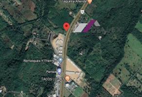Foto de terreno habitacional en renta en  , lazarillos de abajo, allende, nuevo león, 14776552 No. 01