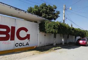 Foto de nave industrial en renta en  , lázaro cárdenas, cuautla, morelos, 19392430 No. 01