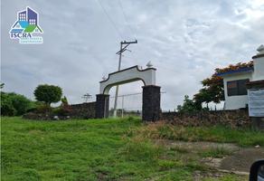 Foto de terreno habitacional en venta en  , tlayacapan, tlayacapan, morelos, 16137402 No. 01