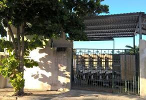 Foto de local en renta en  , leandro valle, mérida, yucatán, 11820555 No. 01