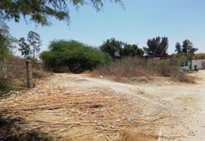 Foto de terreno habitacional en venta en  , nuevo león, león, guanajuato, 16035729 No. 01