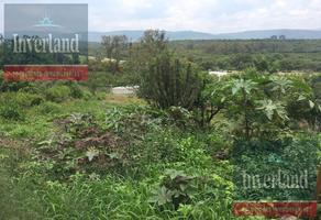 Foto de terreno habitacional en venta en  , nuevo león, león, guanajuato, 17321972 No. 01