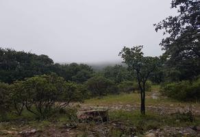 Foto de terreno habitacional en venta en  , león i, león, guanajuato, 20568653 No. 01