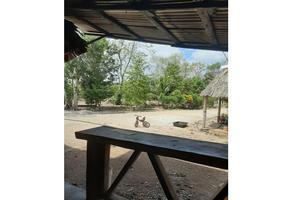 Foto de casa en venta en  , leona vicario, felipe carrillo puerto, quintana roo, 20169928 No. 01