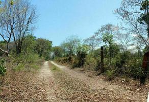Foto de terreno habitacional en venta en leona vicario , leona vicario, felipe carrillo puerto, quintana roo, 0 No. 01