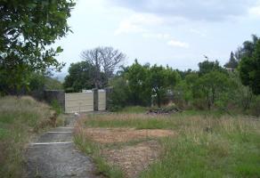 Foto de terreno habitacional en venta en lerdo de tejada , centro jiutepec, jiutepec, morelos, 0 No. 01