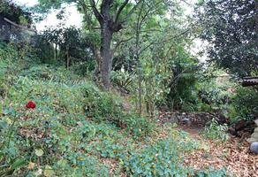 Foto de terreno habitacional en venta en lerin , pátzcuaro centro, pátzcuaro, michoacán de ocampo, 18860148 No. 01