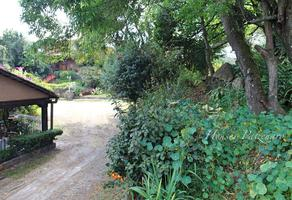 Foto de terreno habitacional en venta en lerin , pátzcuaro centro, pátzcuaro, michoacán de ocampo, 18860152 No. 01