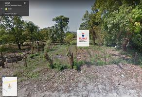 Foto de terreno comercial en venta en libertad , las flores, san pedro tapanatepec, oaxaca, 7654011 No. 01