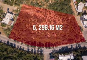 Foto de terreno habitacional en venta en  , libertad, los cabos, baja california sur, 0 No. 01