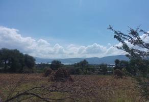 Foto de terreno habitacional en venta en libertad , nextipac, jocotepec, jalisco, 13826592 No. 01
