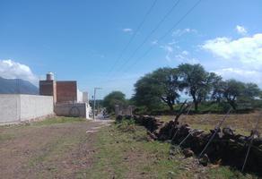 Foto de terreno habitacional en venta en libertad, nextipac, municipio de jocotepec sn , colon, jocotepec, jalisco, 12012588 No. 02