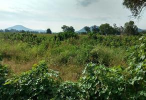 Foto de terreno habitacional en venta en libramiento manuel duran legaspi , atequiza estacion, ixtlahuacán de los membrillos, jalisco, 14169392 No. 01