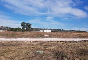 Foto de terreno habitacional en venta en licenciatura , zapotlanejo, zapotlanejo, jalisco, 14122205 No. 01