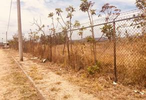 Foto de terreno habitacional en venta en limon , santa cruz del astillero, el arenal, jalisco, 8268237 No. 01