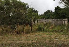 Foto de terreno habitacional en venta en  , lindavista, pueblo viejo, veracruz de ignacio de la llave, 11699238 No. 01