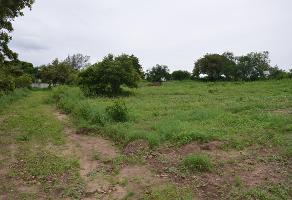 Foto de terreno habitacional en venta en  , lindavista, pueblo viejo, veracruz de ignacio de la llave, 12257175 No. 03