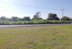 Foto de terreno habitacional en venta en  , lindavista, pueblo viejo, veracruz de ignacio de la llave, 6712178 No. 01