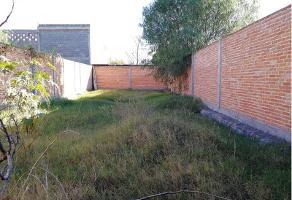 Foto de terreno habitacional en venta en lirio s/d, pedroza, san luis potosí, san luis potosí, 0 No. 01