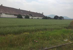 Foto de terreno habitacional en venta en llano grande de tamariz la longaniza s/n , la capilla, ayapango, méxico, 0 No. 01