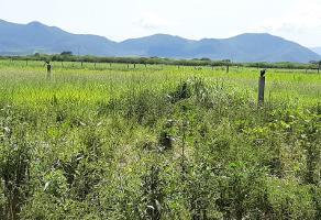 Foto de terreno comercial en renta en  , paseo de la cantera, colima, colima, 9786099 No. 01