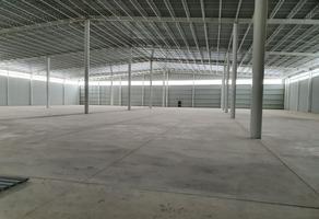 Foto de nave industrial en renta en logistik ii , laguna de san vicente, villa de reyes, san luis potosí, 15940240 No. 01