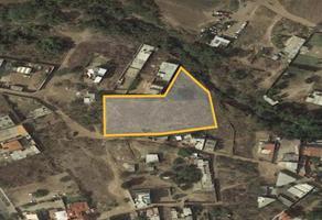 Foto de terreno habitacional en venta en loma de los morales , yerbabuena, guanajuato, guanajuato, 19251675 No. 01