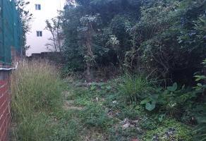Foto de terreno habitacional en venta en  , loma de rosales, tampico, tamaulipas, 11896147 No. 01